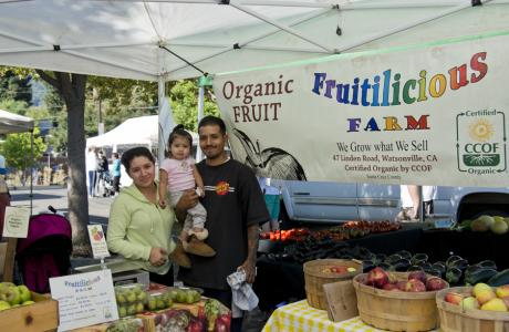 Fruitilicious Farm