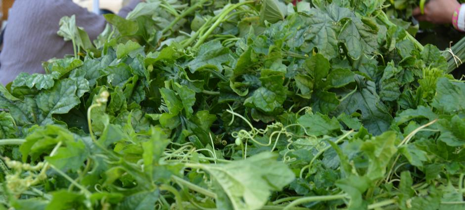 AsianGreens (1)