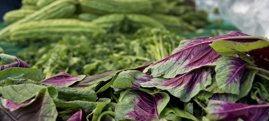 AsianGreens (2)