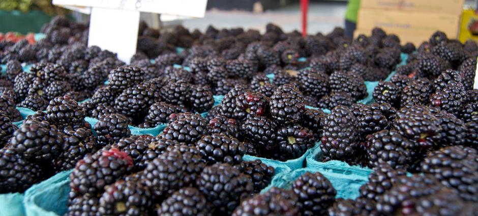 Blackberries (1)