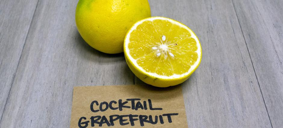 Grapefruit (4)